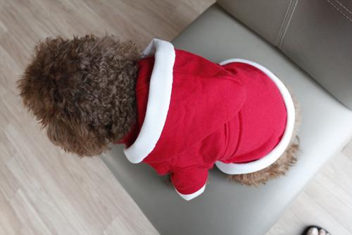 강아지산타옷만들기 (14).jpg